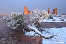 Arches National Park,arches NP