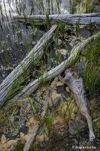 Torrey,boulder mtn,capital reef NP,colorado plateau,colorado plateau sandstone