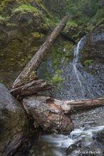 Coast Trip 2016, Fishermen's Bend Area, Oregon Waterfalls, Salmon Falls, road trip 2016