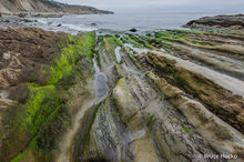 Bandon,Bandon Beach,Coast Trip 2014,Redwoods,Redwoods NP,Salt Point State Park