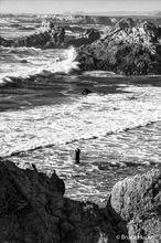Coast,northern CA