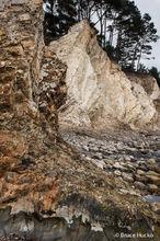 Coast, Coast Trip 2016, Highway 1, Highway 101, Northern CA Coast, Oregon Coast, Redwoods, Salt Point State Park