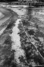 Colorado River Ice,desert ice,ice