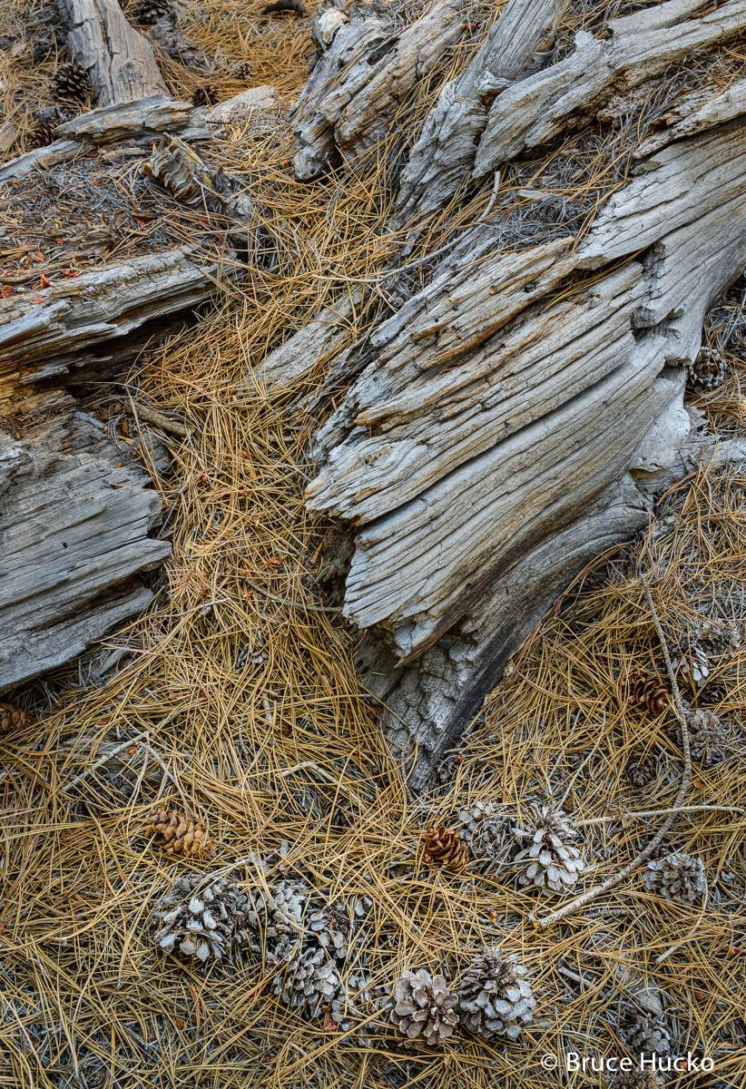 Torrey,boulder mtn,capital reef NP,colorado plateau,colorado plateau sandstone, photo