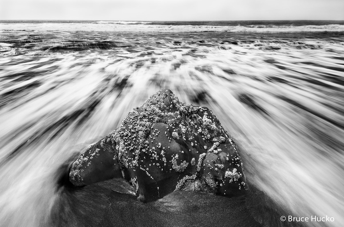 Bandon,Bandon Beach,Coast Trip 2014,Redwoods,Redwoods NP,Salt Point State Park, photo