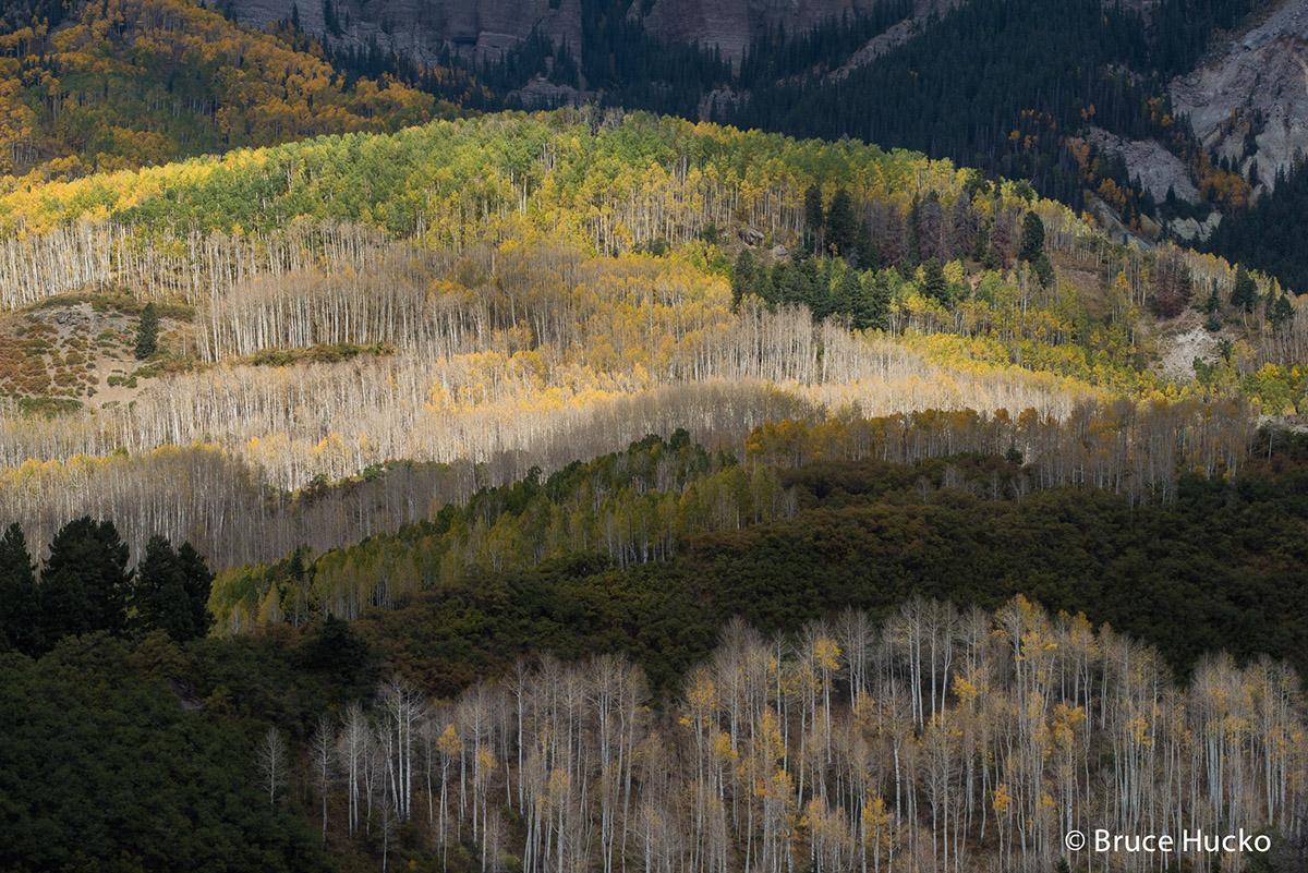 Colorado,Colorado Fall Color,San Juan Mtns., photo