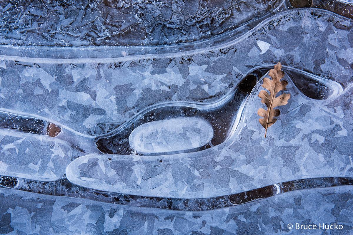 ice, photo