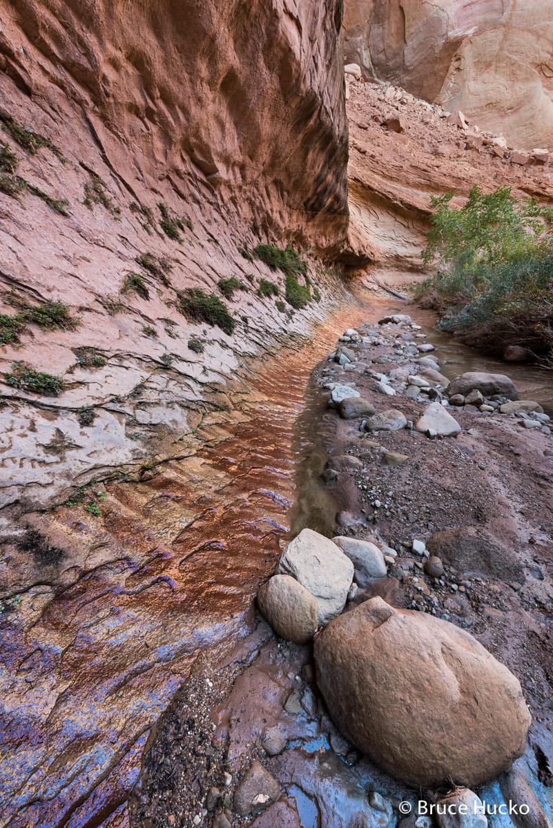 Escalante,Grand Staircase-Escalante NM,Peek-a-Boo Canyon,Willow Canyon, photo