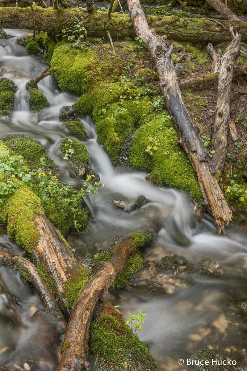 lasal mountains, photo