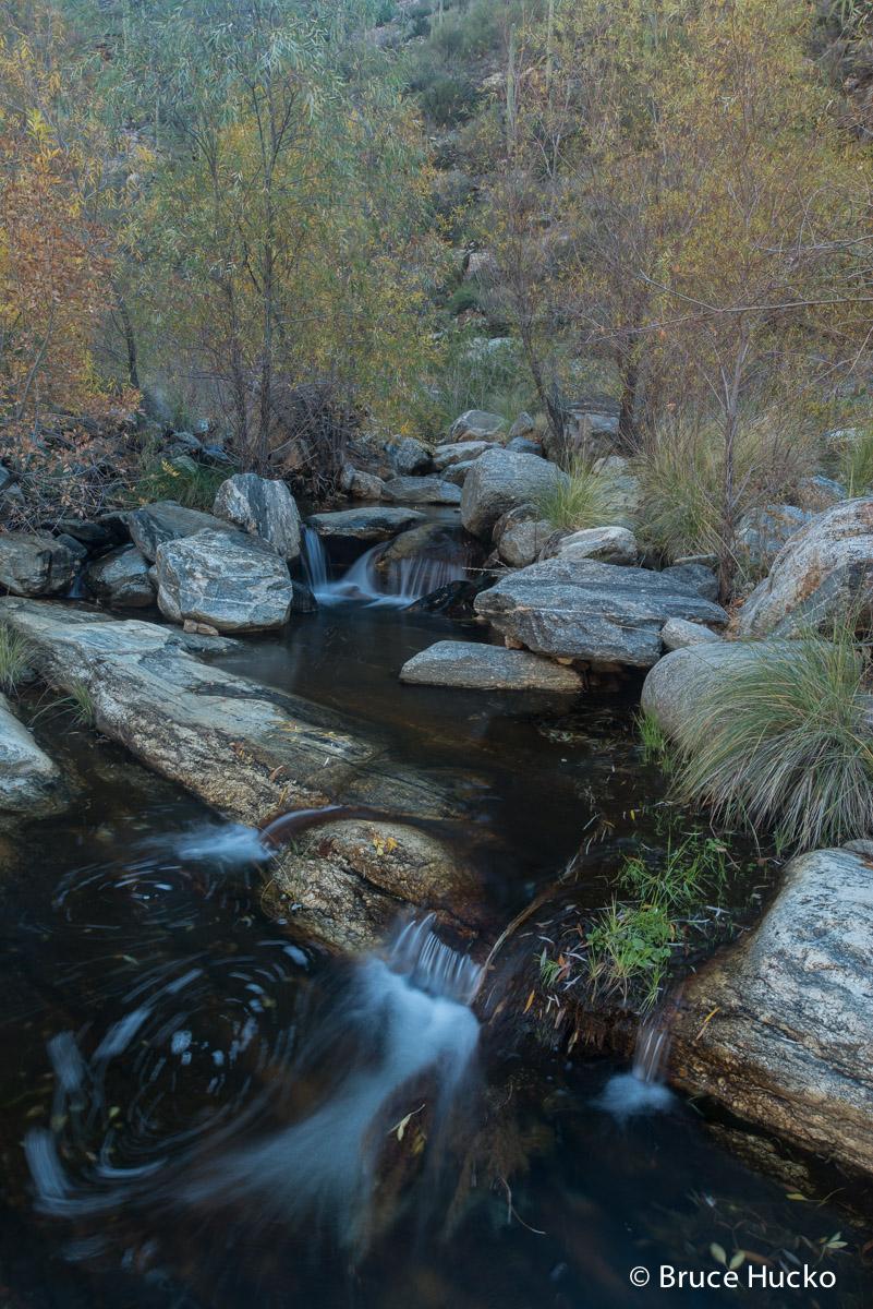 Bear Canyon,Sabino Canyon,Sabino Recreation Area,Sonoran Desert,Tucson area, photo