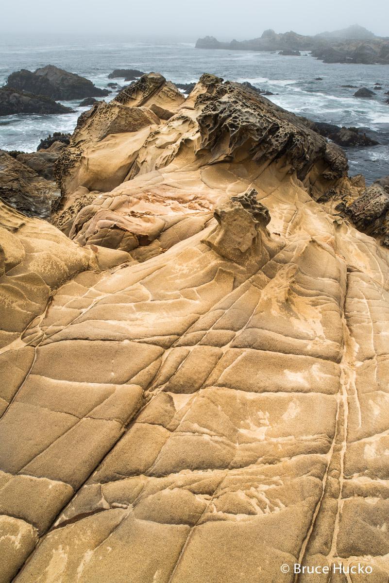 Coast,Salt Point State Park,northern CA, photo