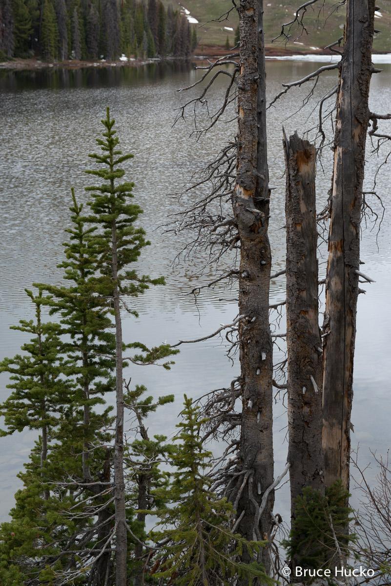 Yellowstone,Yellowstone National Park