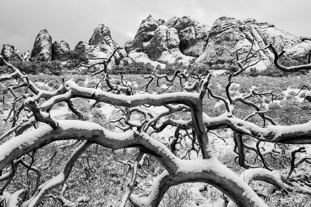 Arches National Park,arches NP winter, photo